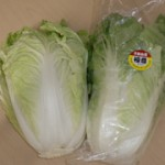 chinesecabbage_product